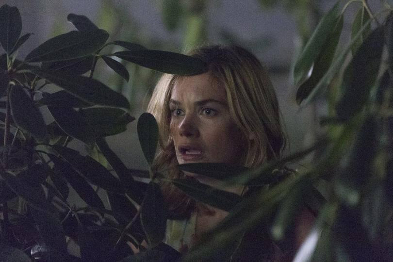 the-affair-season-2-finale-alison's version